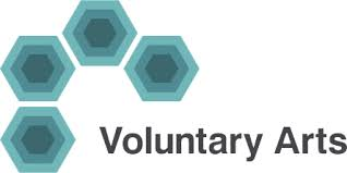 Voluntary Arts Ireland